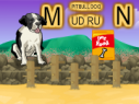 pitbull-dog-mudrun1