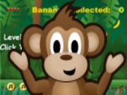 Flash Cheeky Monkey