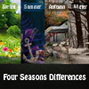 Four Seasons Diferencias