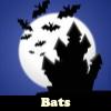 Los murciélagos. Encuentra objetos
