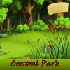 Central Park 5 diferencias