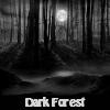 Bosque Oscuro. Encuentra objetos