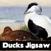 Patos Jigsaw