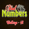 Find the Numbers 42