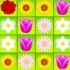 Flower Power Partido