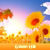 Green Hill 5 diferencias