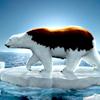 Greenpeace Oso Polar