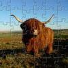 Vaca de la montaña Jigsaw