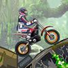 Selva Moto Trial