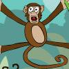 Selva del Mono Araña