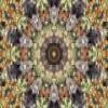 Kaleidoscape deslizante