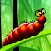 Larva sueño