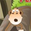 Mono Perdido