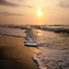 Myrtle Beach Jigsaw
