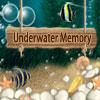 Nueva memoria Submarino