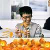Naranja Squeeze
