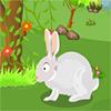 Conejo de Escape