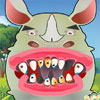 Problemas dentales Rhino