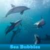Sea Bubbles 5 diferencias