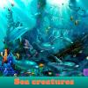 Las criaturas del mar. Encuentra objetos
