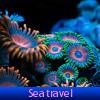 El viaje por mar. Encuentra objetos
