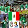 Selection of Mexico, Group A, South Africa 2010 Puzzle