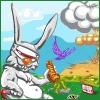 Senso conejo