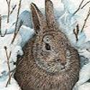 Nieve Rabbit Puzzle