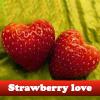 Amor fresa