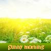 Soleado por la mañana