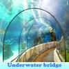 Puente bajo el agua