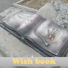 Wish Book. Busca las diferencias